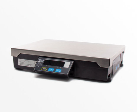 CAS PD 2Z POS Interface Scale, angle view