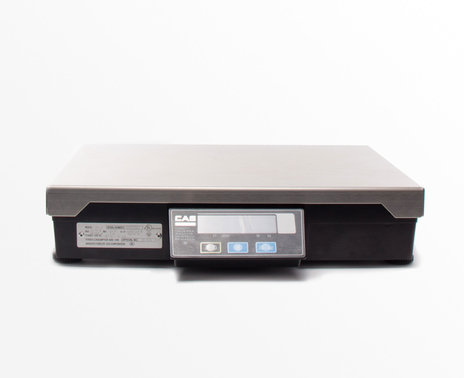 CAS PD 2Z POS Interface Scale, front view